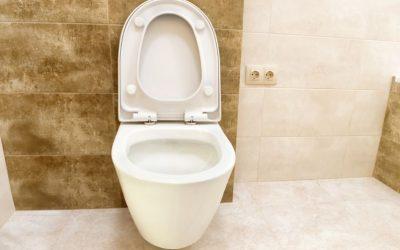 Você conhece a solução ideal para o desentupimento de vasos sanitários?